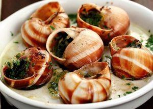 L'escargot (Slakken)